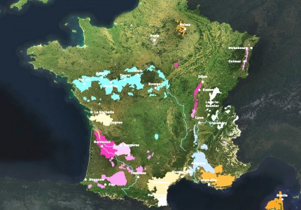 Carte du vignoble